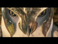 Legend of the Guardians: The Owls of Ga'Hoole - Main Trailer
