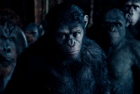 Dawn Of The Planet Of The Apes - International Trailer