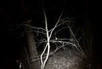 Ghoul - Trailer 2