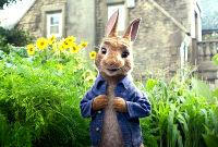Peter Rabbit - First Official Trailer