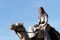 Queen of the Desert - Trailer