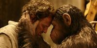 ''Dawn Of The Planet Of The Apes'' International Trailer Reveal