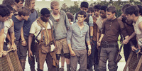 The Maze Runner Raced to First Place at the Phils. Box-Office with P62.4 Million