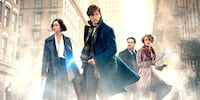 WATCH: Final Trailer of 'Fantastic Beast' Unleashes the Magical Creatures