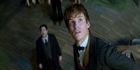 Eddie Redmayne Greets PH, Leads Magical Cast of Fantastic Beasts