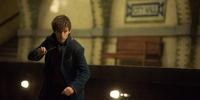 Fantastic Beasts Earns a Magical Half Billion Dollars Worldwide, P231.17-M in PH