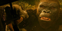 WATCH: Monster Film, Kong: Skull Island, opens in cinemas today