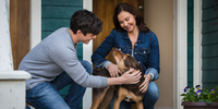 Dolphin Tale Director Brings Another Heartwarming Animal Movie with A Dog's Way Home
