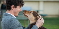 A Dog's Way Home' Finds a Beloved Human for its Canine in British Actor Jonah Hauer-King