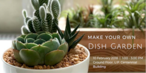 Make Your Own Dish Garden