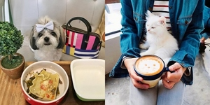 8 Pet-Friendly Restaurants in Metro Manila