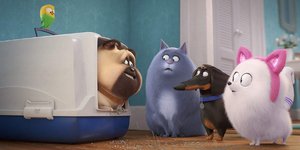 Watch: The Newest Trailer to 'The Secret Life of Pets 2' Shows the Secret Emotional Life of Pets