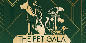 The Pet Gala: 12th Pet Blessing