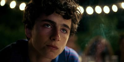 Timothee Chalamet, In the Mood for Love in Call Me By Your Name