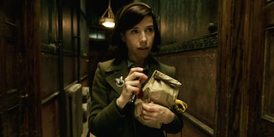 Best Actress Nominee Sally Hawkins in a Love Affair Beyond Words in The Shape of Water