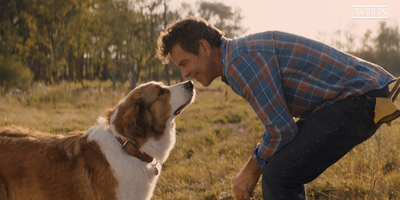 Actor Dennis Quaid To Reprise His Role in 'A Dog's Journey'