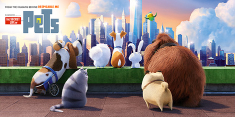 New Movies This Week: The Secret Life of Pets, Camp Sawi and more!