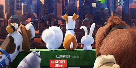 'The Secret Life of Pets' Resides in the Shadow of 'Toy Story'