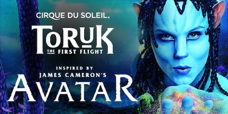 Cirque Du Soleil: Toruk - The First Flight