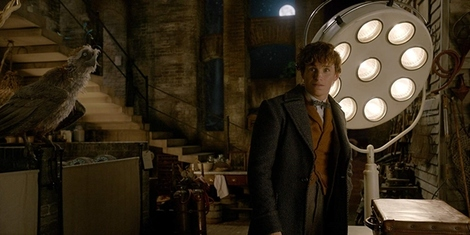 New Movies This Week: Fantastic Beasts: The Crimes of Grindelwald and more!