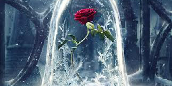 """Enchanted Rose Takes Spotlight in """"Beauty and the Beast"""" Teaser Poster"""