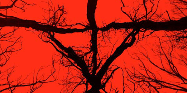 'Blair Witch' has Better Cameras, but is the Same Movie