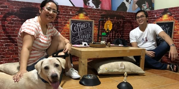 "Have a ""FURst Date"" with Shelter Dogs and Cats From the PAWS Rescue Center!"