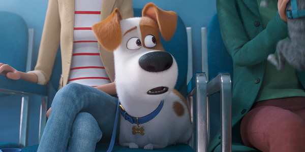'The Secret Life of Pets 2' is About Family and Pet Connection