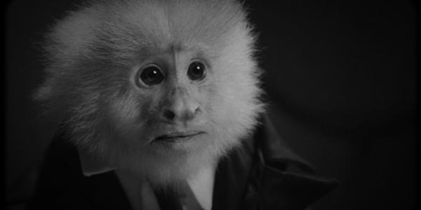 David Lynch Interrogates a Monkey Suspected for Murder in Netflix Short