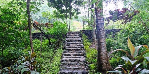 Wish We Were Here: Taking a Break at Mt. Purro Nature Reserve in Rizal