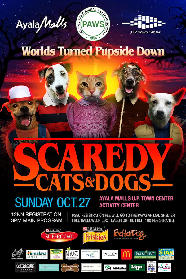 Paws Scaredy Cats & Dogs