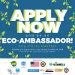 Young Eco Ambassadors: Catalyst