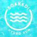 Soaked! Hydro Run