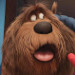 Discover 'The Secret Life of Pets' When You're Not Home