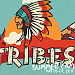 Tribes Summer Camp 2017 Concert Night
