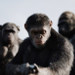 Amazing Before & After Movie Stills Using Mo-Cap in War For The Planet Of The Apes