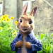 WATCH: Animal Mayhem Erupts in the 'Peter Rabbit' First Official Trailer