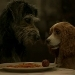 WATCH: Trailer for Disney's Lady and The Tramp Live-Action Film