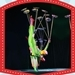 Meet The China National Acrobatic Troupe Performing in Manila!