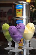 Ice Creams Half Gallon (Ube, Avocado, Cheese)
