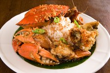 Fely J's Temple Crab