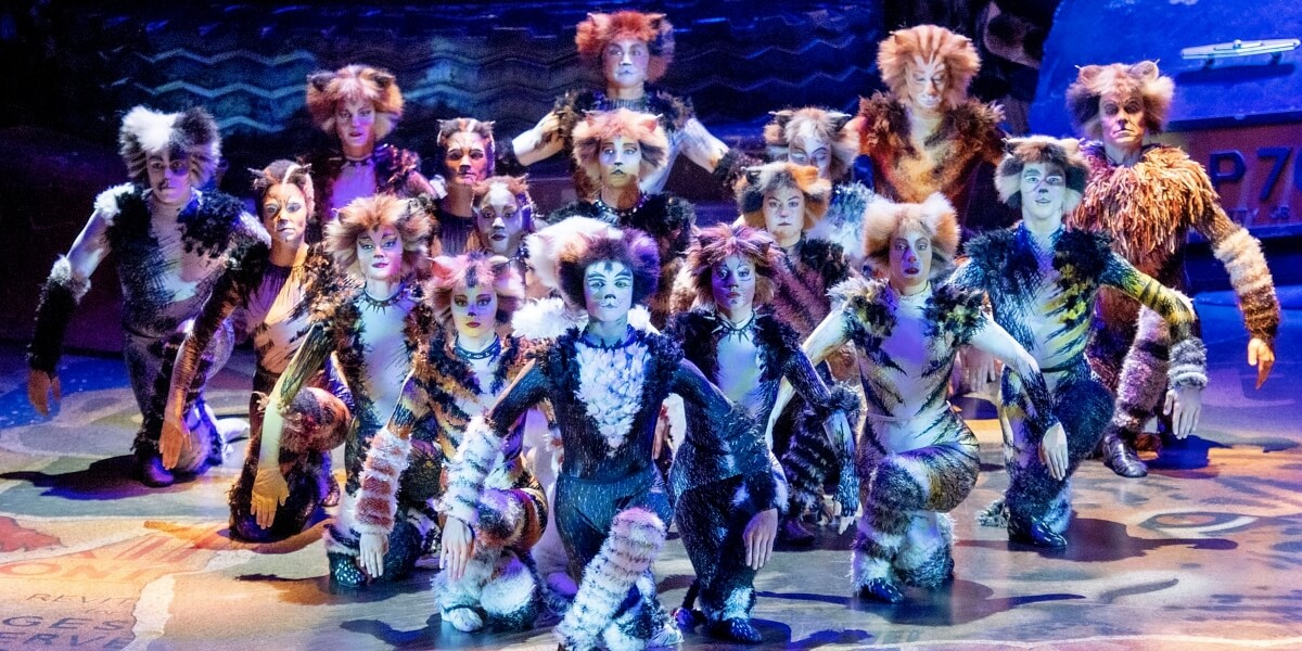 'Cats' The Musical Will Stream Next on Youtube