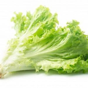 Organic Green Ice Lettuce