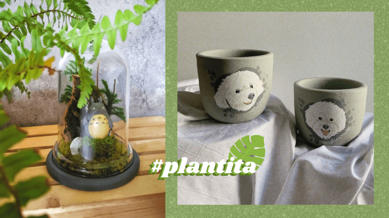 Gifts for Plant Parents