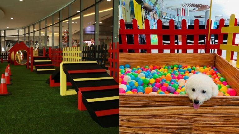 Let Your Adorable Furbabies Play in Robinson Malls' New Pet Park