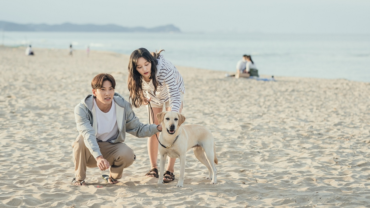 K-Drama Files: 'Lovestruck in the City' is a Unique and Mature Drama About Finding Love