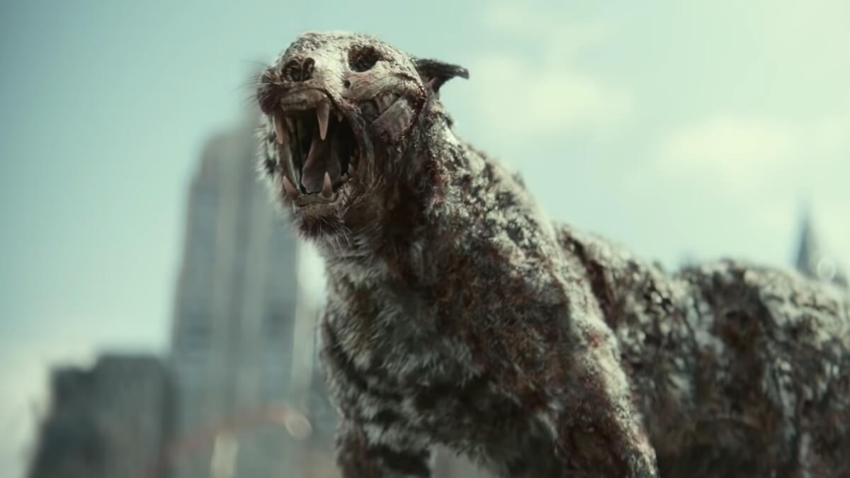 WATCH: Zack Snyder's 'Army of The Dead' Trailer Teases a Zombie Tiger