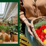 Sm Supermalls Farmers' Produce