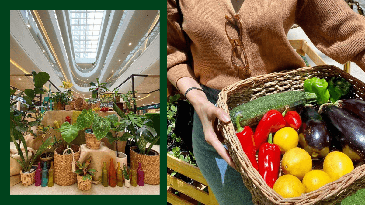Read more about the article Farmers' Produce at SM Supermalls Returns this June 3 to July 25