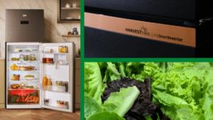 Beko Refrigerator - HarvestFresh
